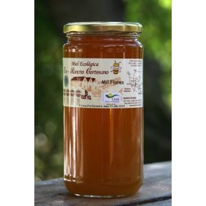 Miel Mil Flores de producción ecológica 1 kg